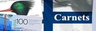Finlande - Carnets