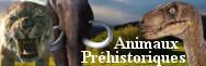 - Animaux préhistoriques
